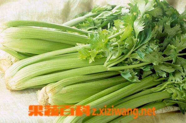 果蔬百科降血压的蔬菜
