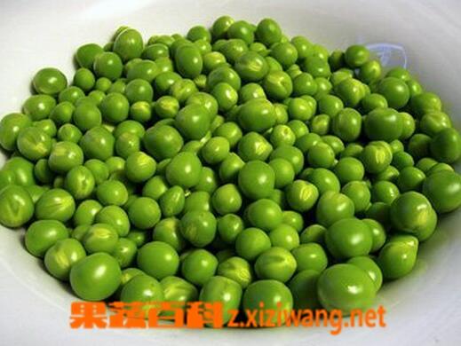果蔬百科青豆的营养价值与功效